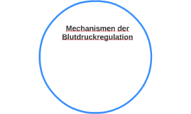 Mechanismen der Blutdruckregulation