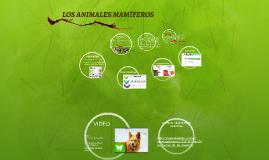 ANIMALES MAMIFEROS