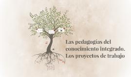 Las pedagogías del conocimiento integrado. Los proyectos de