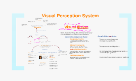 Visual Perception System