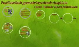 Facéliavetések gyomflórájának elemzése