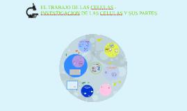 EL TRABAJO DE LAS CELULAS -