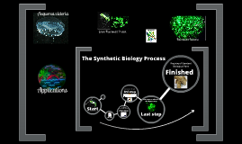 The Synthetic Biology Process