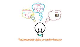 Copy of Funcionamento global do cérebro humano