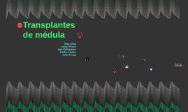 Transplantes de médula jejejej