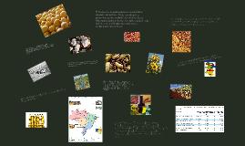 La agricultura y sus fuentes de energía