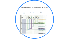 Desarrollo de la evolucion Humana