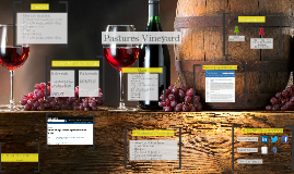 Winery - marketing campaign
