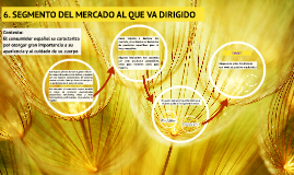 6. SEGMENTO DEL MERCADO AL QUE VA DIRIGIDO