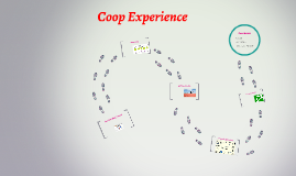 Coop Experience
