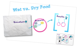 Wet vs. Dry Dog Food