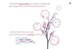 Copy of Práctica pre-profesional