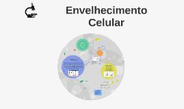 Envelheimento Celular