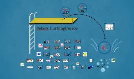 Copy of Peixes Cartilaginosos