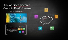 Use of bioengineered Crops to feed humans