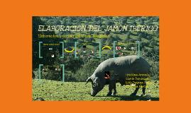 Elaboración del jamón ibérico