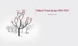 Political protest groups 1800-1930