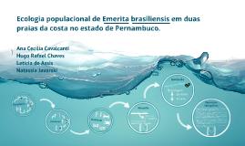Copy of Ecologia popiulacional de Emerita brasiliensis em duas praia
