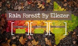 Copy of Rain Forest By Eliezer