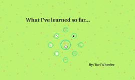 What I've learned so far...