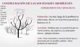 CONFIGURACIÓN DE LAS SOCIEDADES ABORÍGENES