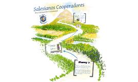 Salesianos Cooperadores, Discernimiento Vocacional