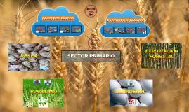 SectorPrimario