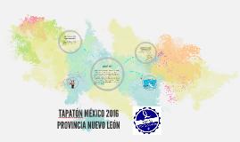 Copy of TAPATÓN MÉXICO 2016