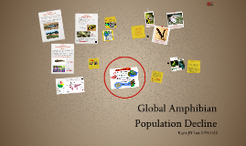 Global Amphibian Population Decline