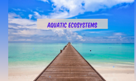 Aquatic Eco-Systems