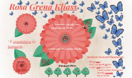 Copy of Rosa Grena Kliass