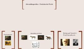 Abwandlungsreihen - Evolution der Pferde