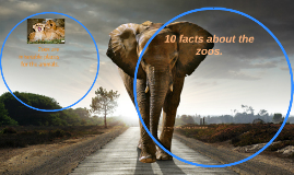 10 facts why zoos are bad. by Timea olah on Prezi