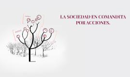 Copy of LA SOCIEDAD EN COMANDITA POR ACCIONES.