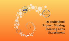 Q1 individual project