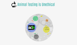 Animal Testing is Unethical