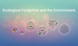 Ecological Footprints and the Environment