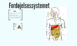 Fordøjelsessystemet biologi 7 årgang