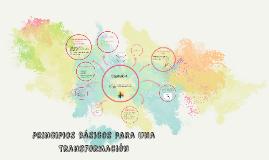 principios básicos para una transformación