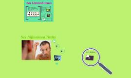 Copy of sex linked genes