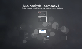 BSG Analysis - Company H
