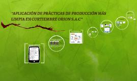 """Copy of """"APLICACIÓN DE PRÀCTICAS DE PRODUCCIÓN MÁS LIMPIA EN CURTIEM"""