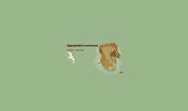 Alpensteenbok & zwarte wouw