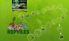 Chordata - Reptiles