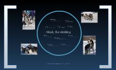 Robert Blake's Akiak - Character Traits