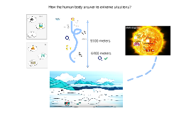 how human´s body answer to extreme situations