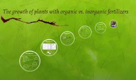 Copy of The growth of plants with organic vs. inorganic fertilizers