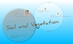 Soil and Vegetation