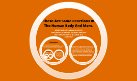 Chemical Reactions In The Body
