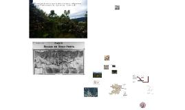 A paisagem do ouro: propostas de intervenção em antigas área